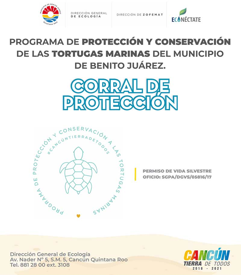 Permit for the Sea Turtle Protection Corrals in Cancun 2019